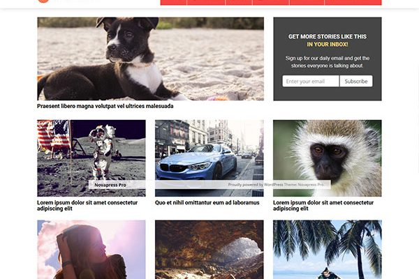 25 Top-Notch AdSense-Optimized Themes For Higher Ad Earnings